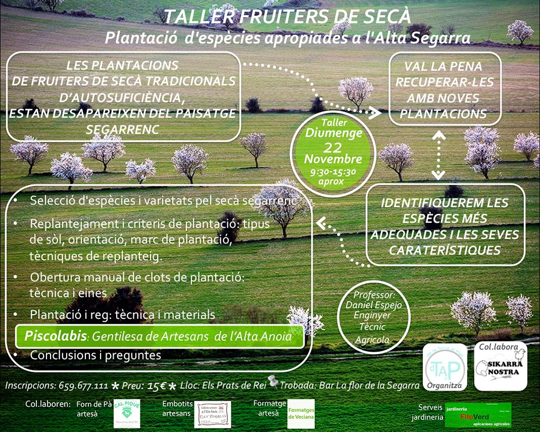 cartell TALLER: FRUITERS DE SECÀ, Plantació d'espècies a propiades a l'Alta Segarra