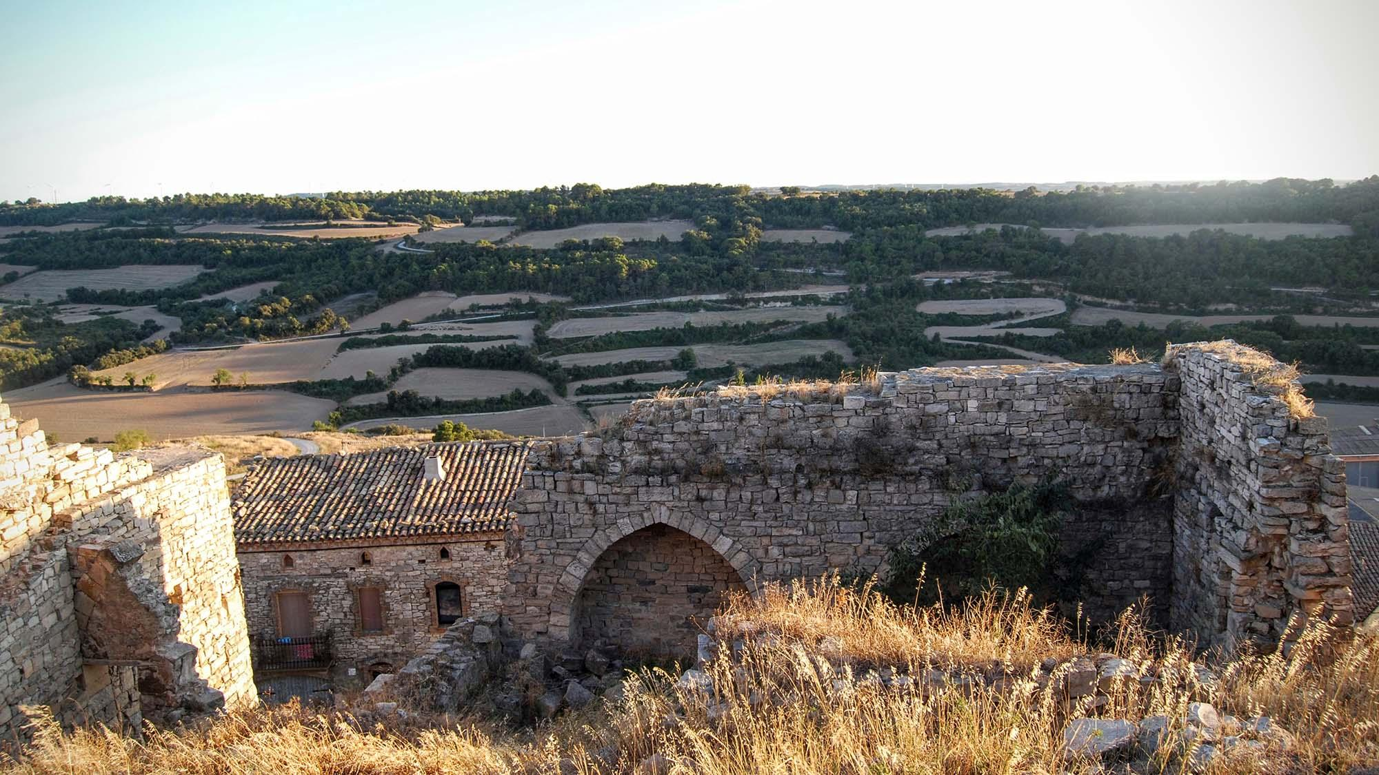 Castell de Montoliu de Segarra
