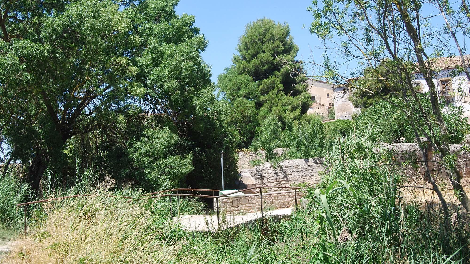 Espace  Font dels Horts