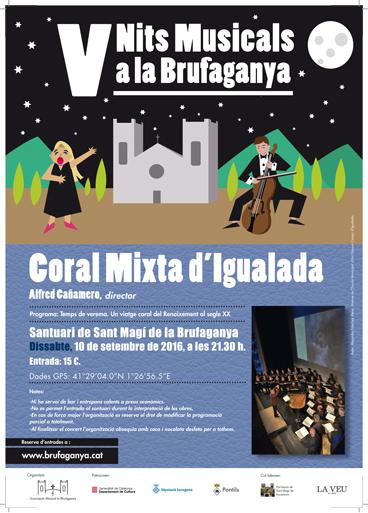 cartell V Nits Musicals a la Brufaganya