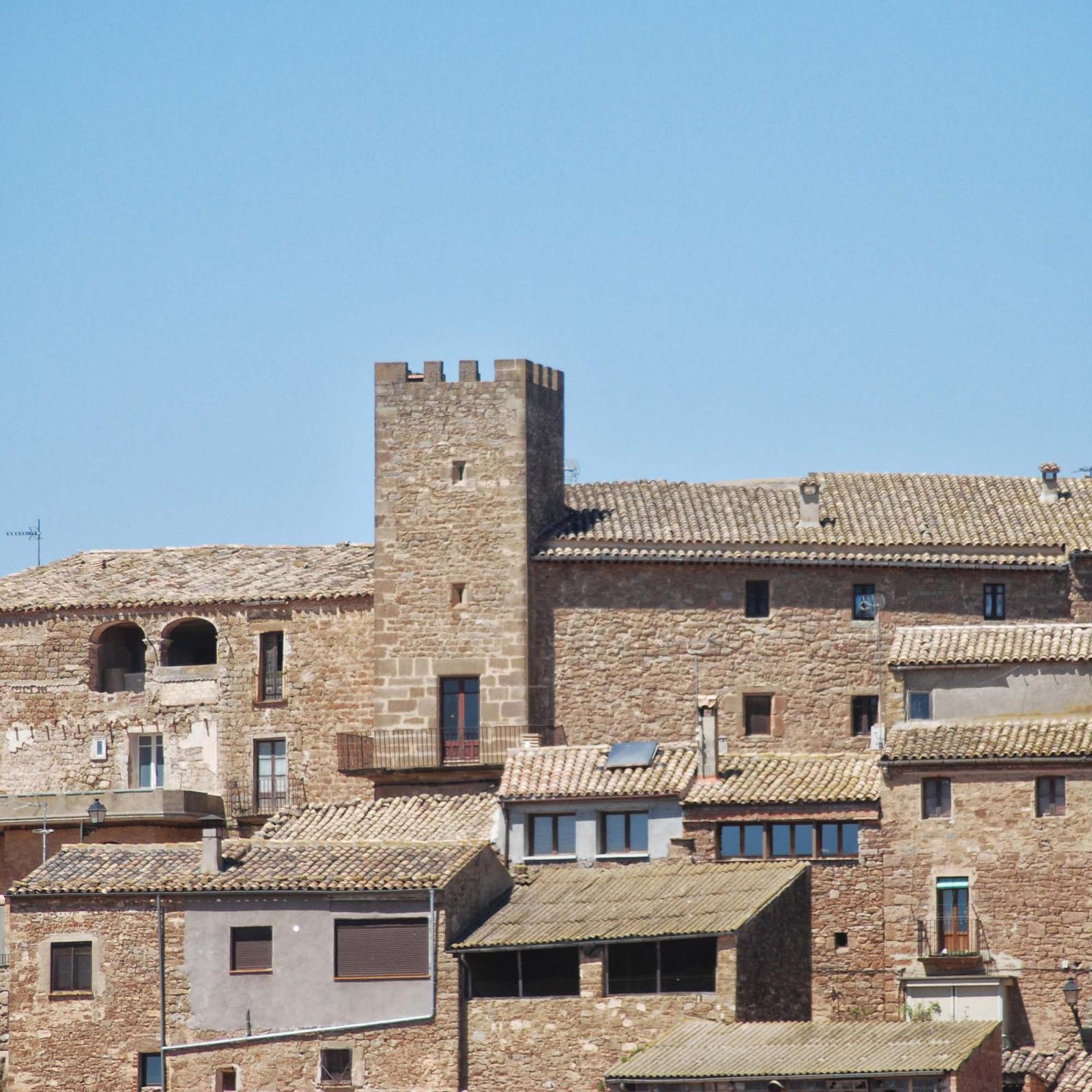 Castle of Florejacs