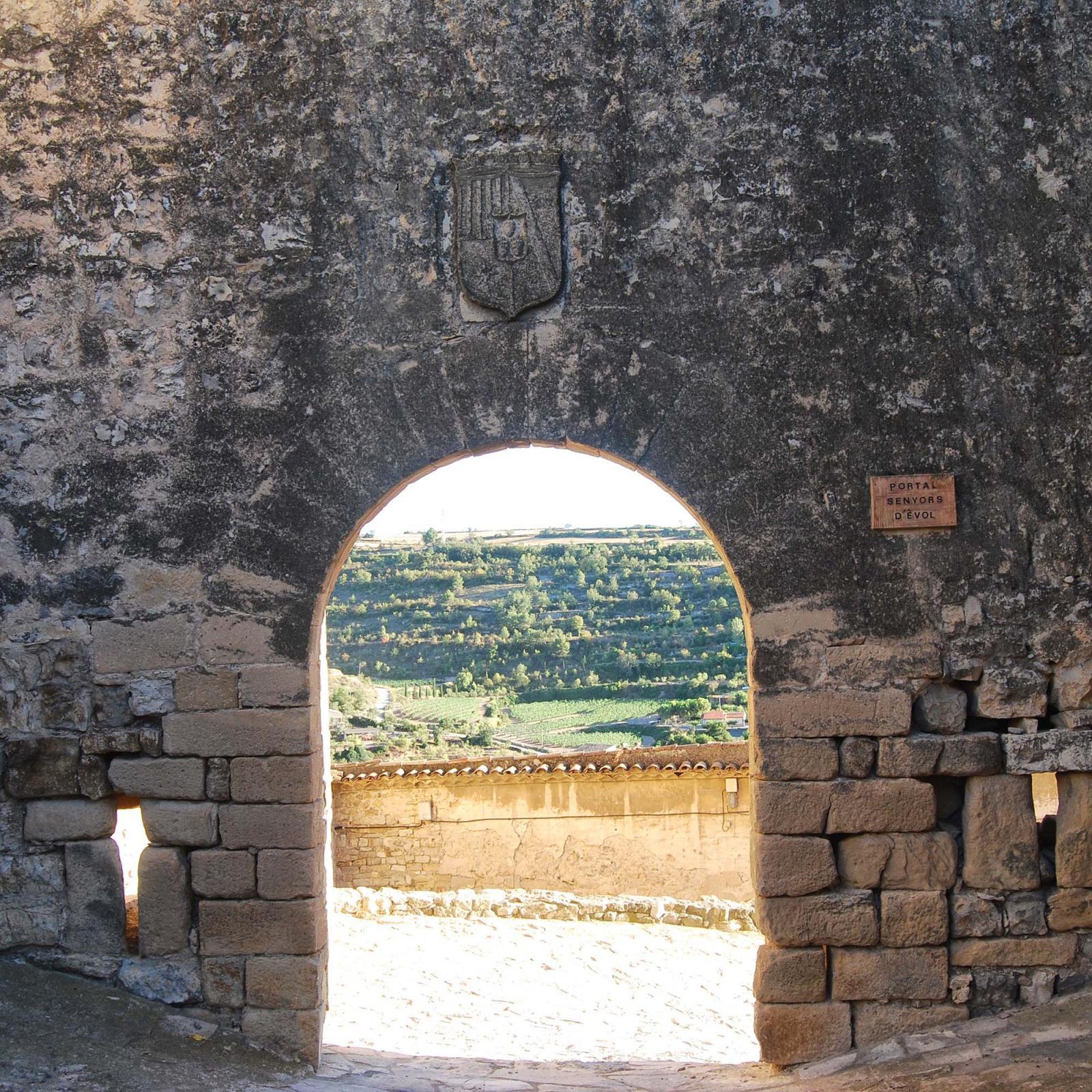 Portal de Évol