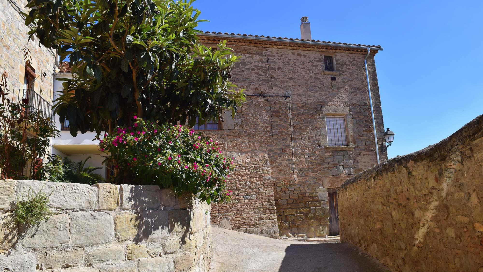 Castell de Sedó