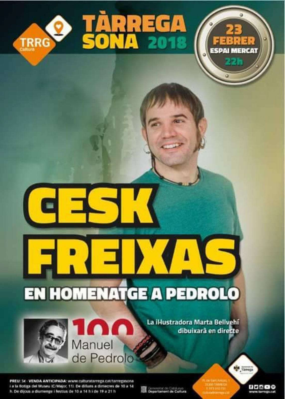 Concert de Cesk Freixas en homenatge a Manuel de Pedrolo