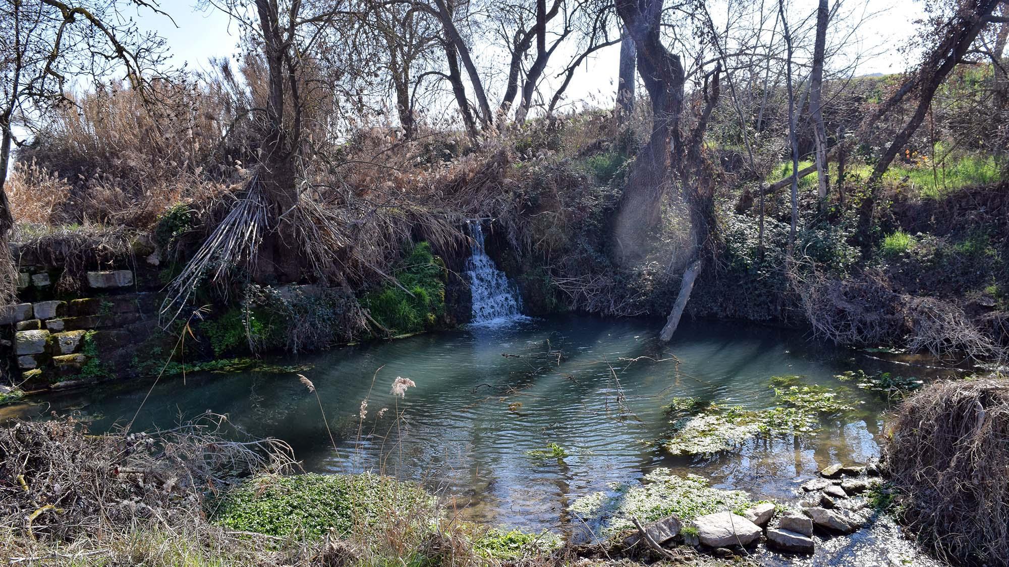 Espace fluvial Peixera de la Prenyanosa
