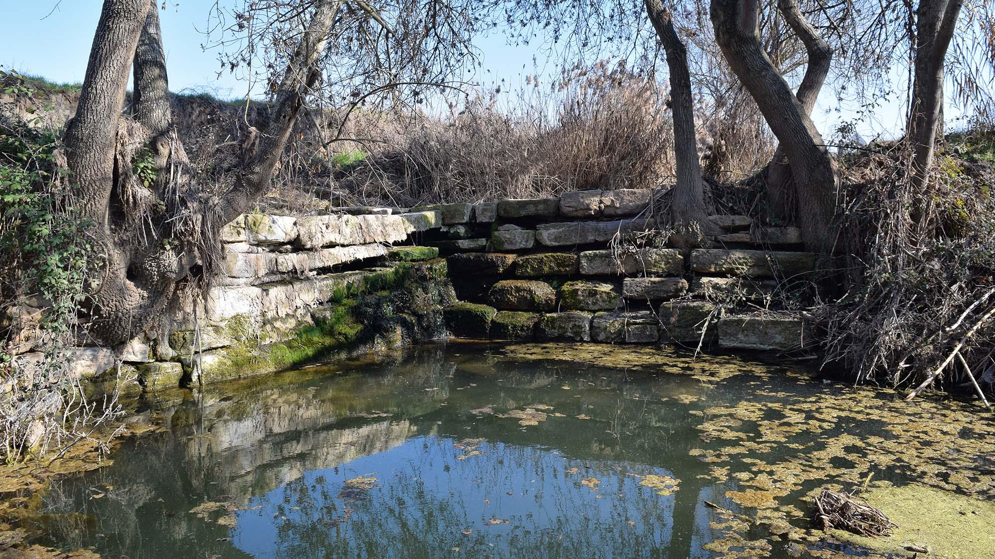Espace fluvial  Peixera de Sedó