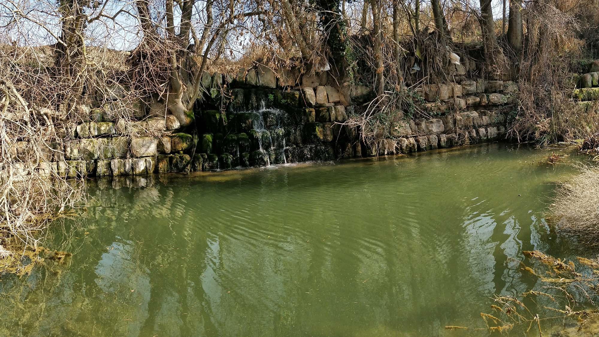 Fluvial space  Peixera de Sedó