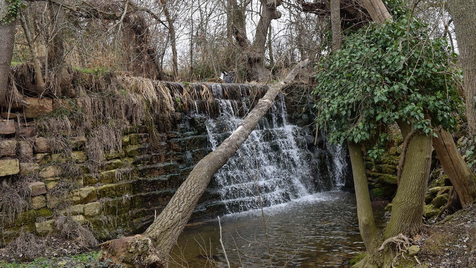 Espai fluvial  Peixera de la Puda