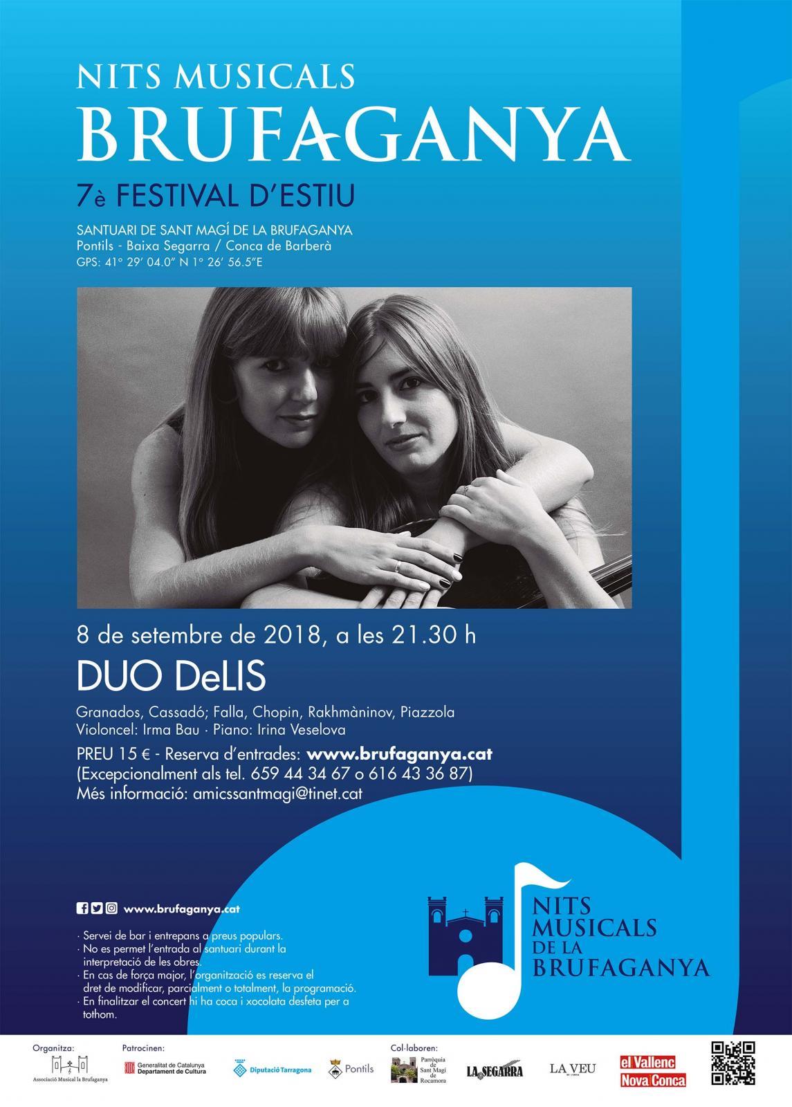 cartell DUO DeLIS (Nits Musicals de la Brufaganya)