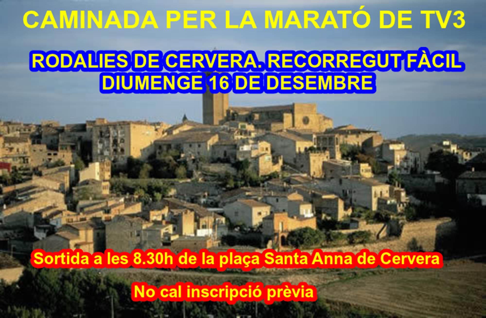 Caminada per la Marató TV3