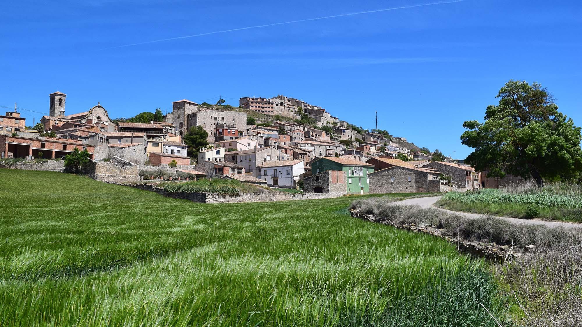 Hiking trail Les Oluges - Vergós Guerrejat