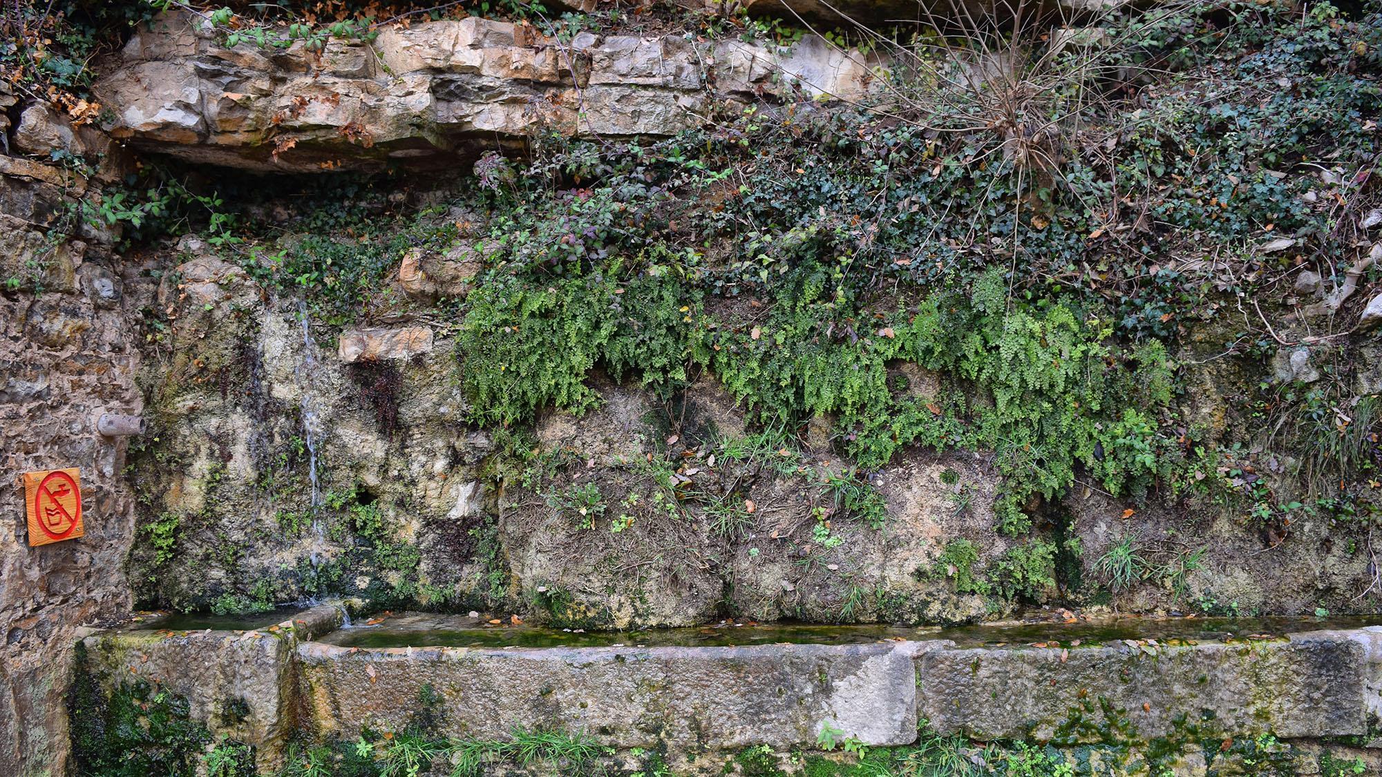 Fontaine La Llavinera