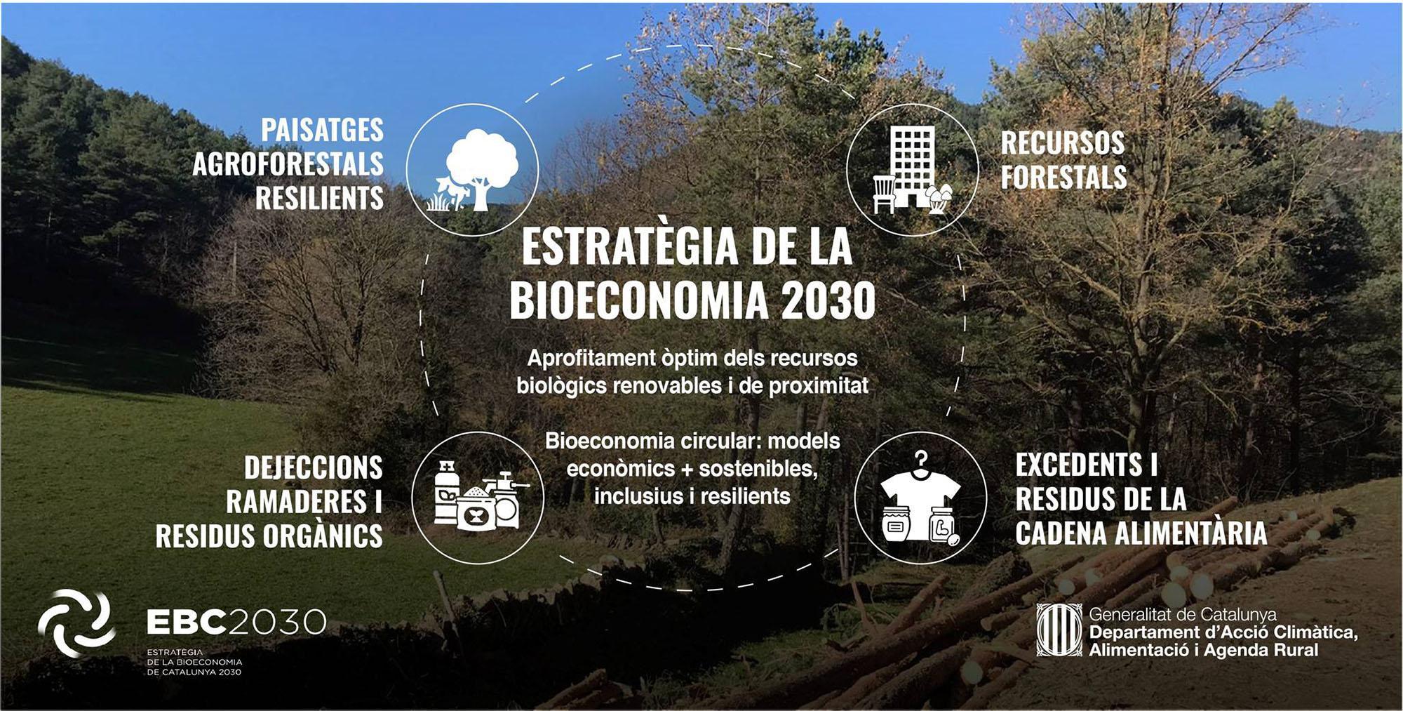 El Govern aprova l'Estratègia de la bioeconomia de Catalunya 2030