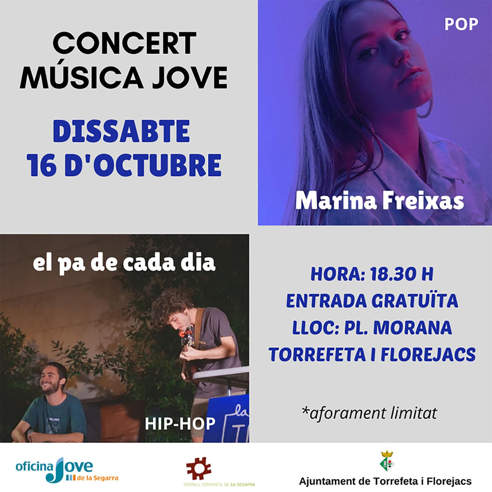 cartell Concert de música jove